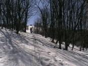В лесу, как на трассе спуска, так и подъема - снега много