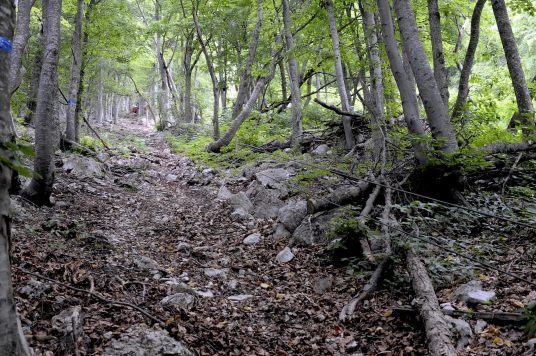 Верх второй очереди подъемника на Ангарском перевале