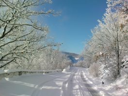 Солнце, Снег, Крым