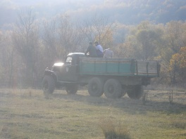 нелегальные лесорубы-бандеровцы в селе Богатырь