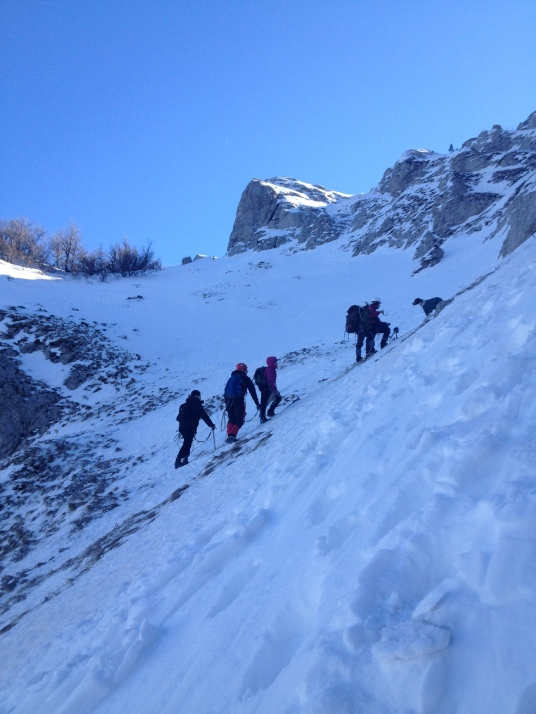 Юные альпинисты тренируются. Не привязана только собака